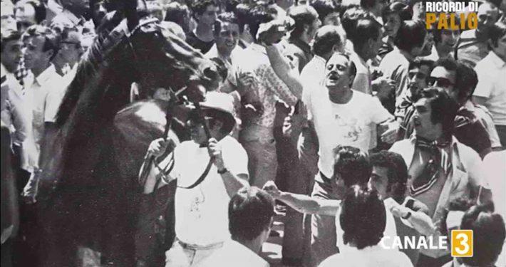 Topolone alla Tratta del Palio di Siena del 2 luglio 1972