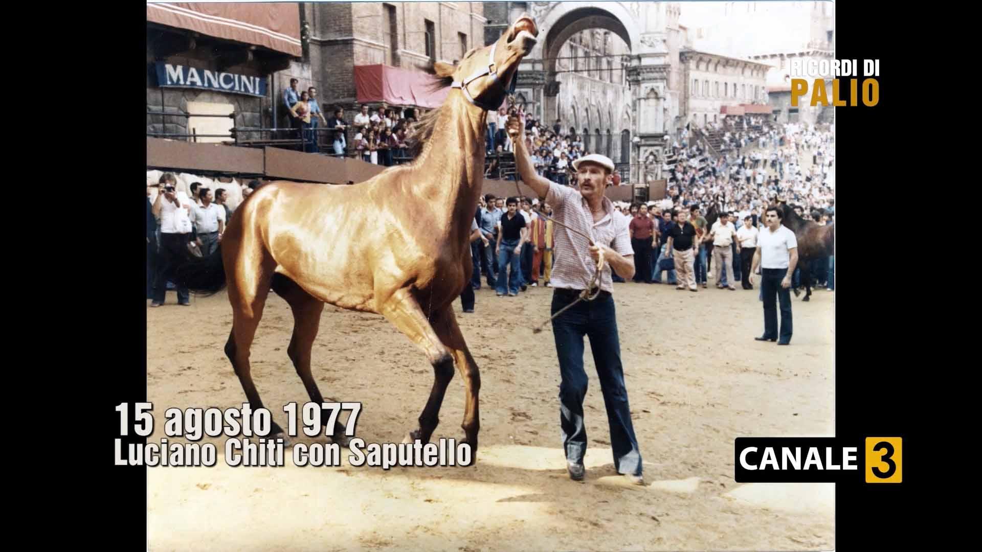 Palio di Siena del 16 agosto 1977 Luciano Chiti con Saputello